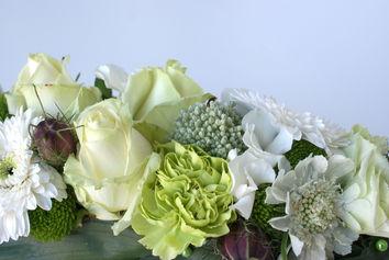 Bloemencreatie compact wit