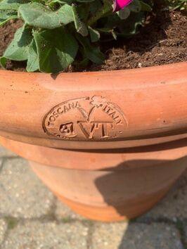 Terracotta pot gevuld met 1 jarigen-mix